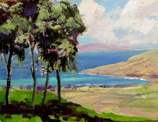View of Lanai From Ali'i Kula Lavender