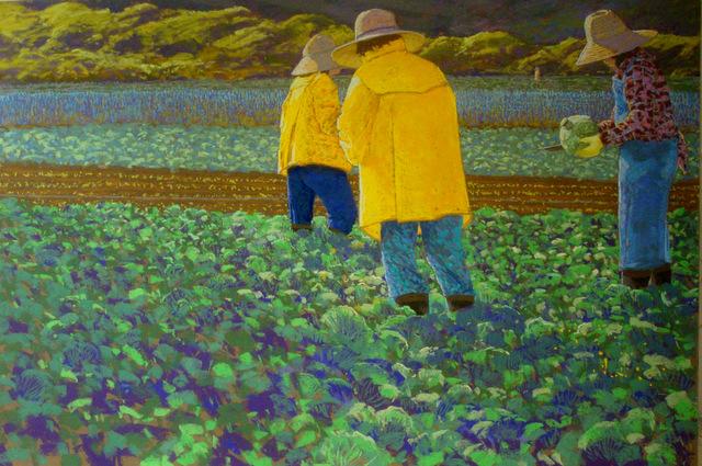 Kula Cabbage Field Workers