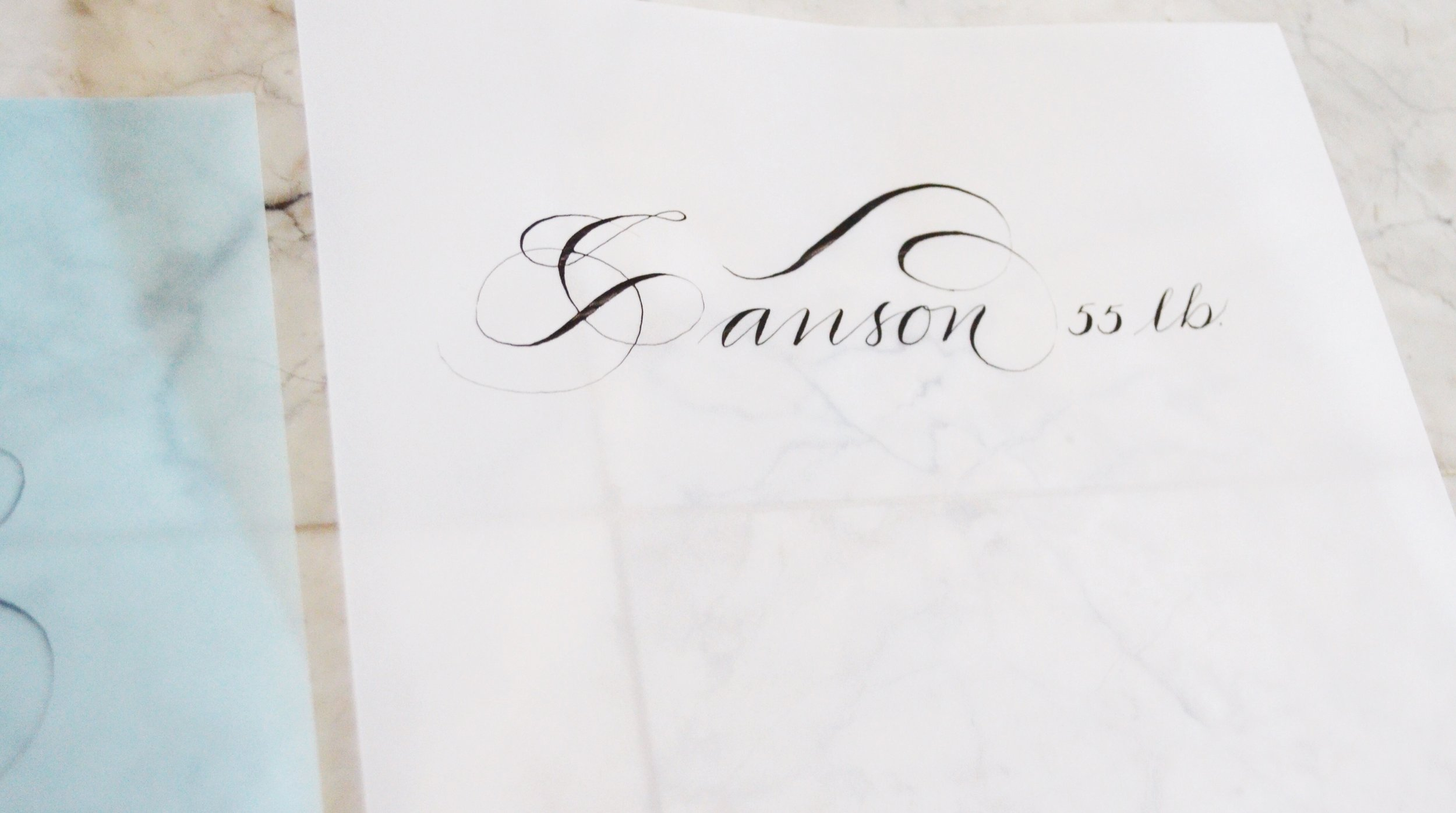Yes, flourishing mistakes all around, but I wanted to see the comparison of the vellum....not bad.