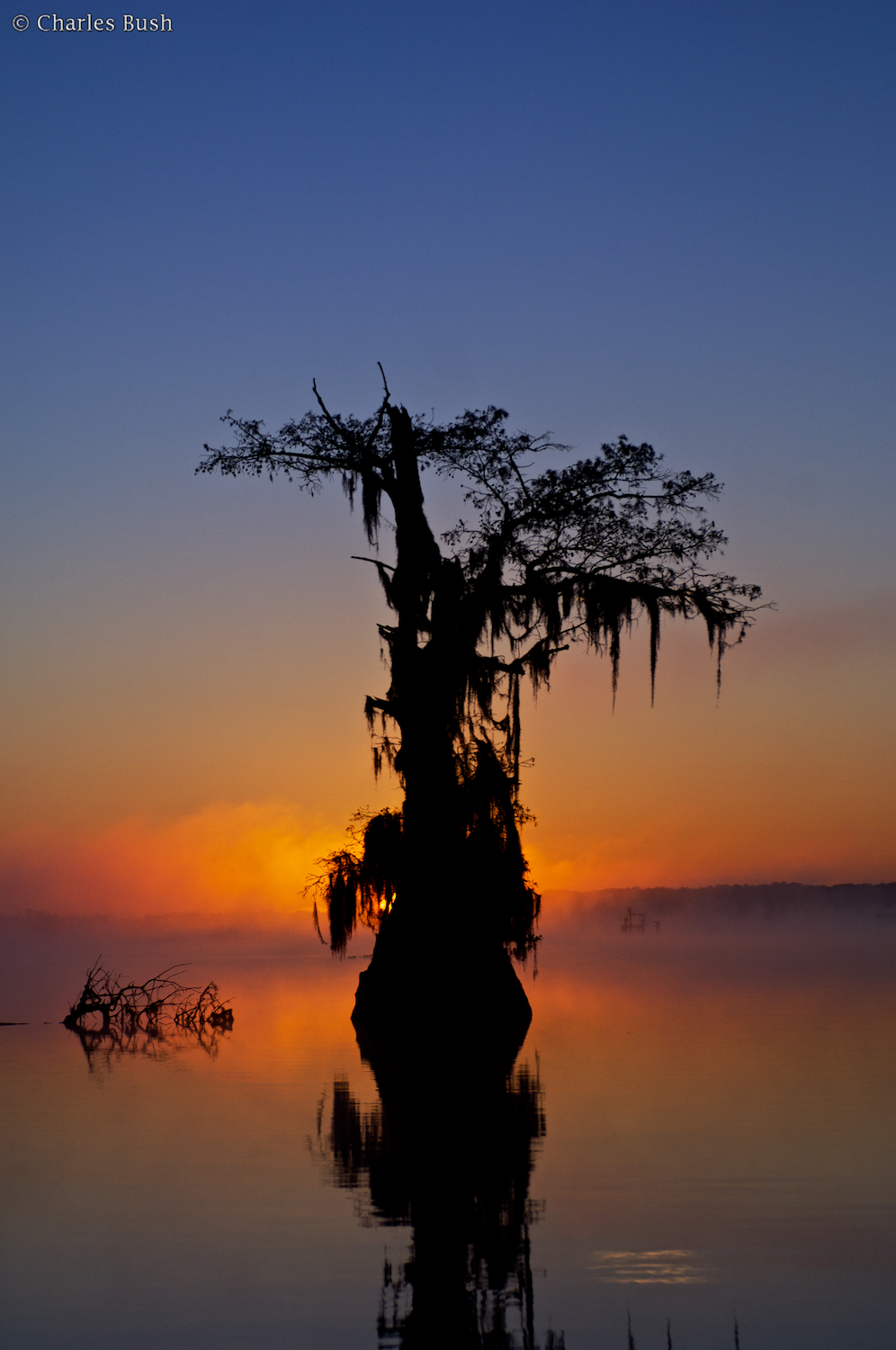 Boat positioned with rising Sun Behind Cypress Tree.Taken with Nikkor 28-70 @ 70mm f5.6.