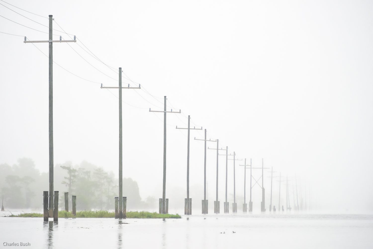 Power lines across the Atchafalaya Basin