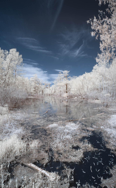 Infrared Image–Lake Martin