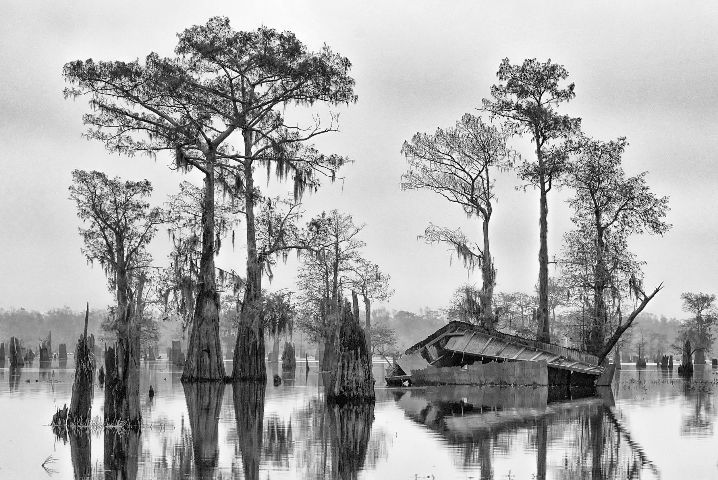 Abandoned Hunting Blind in the Atchafalaya Basin