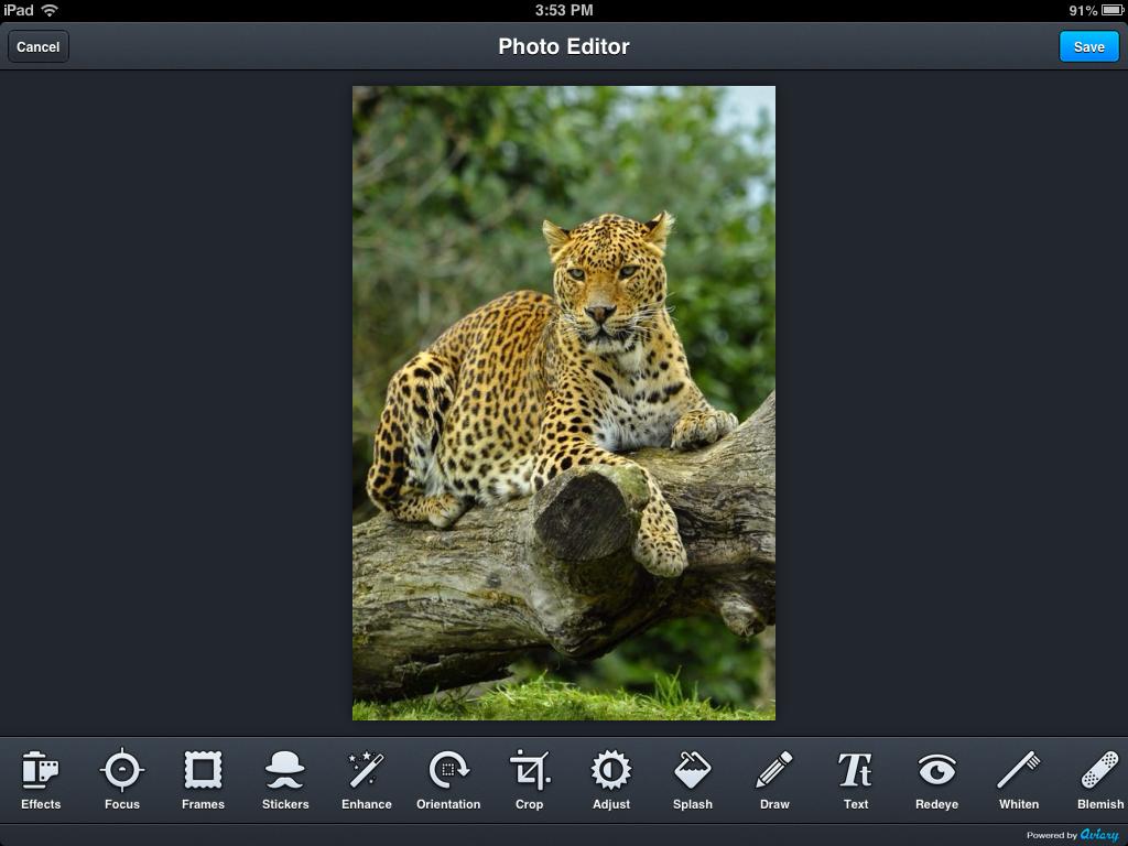 filepicker2.jpg
