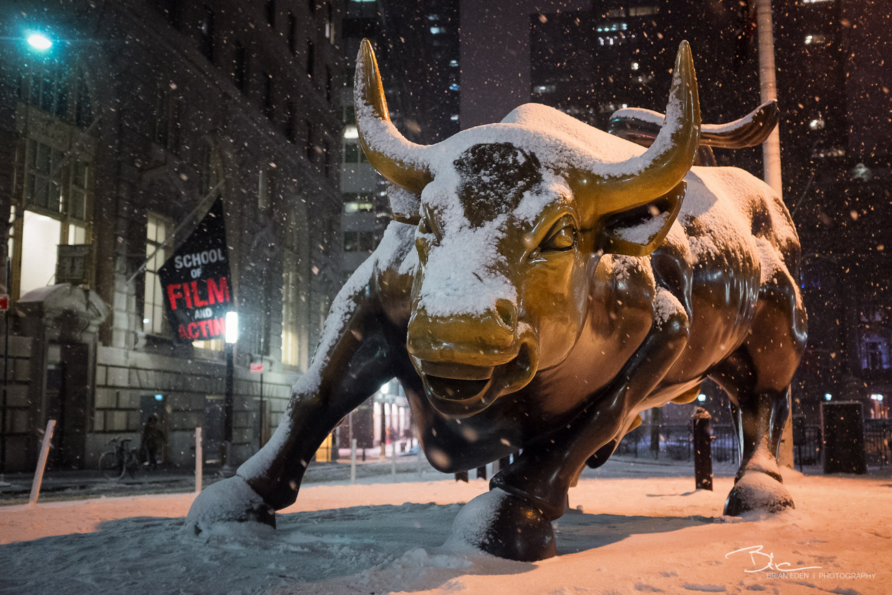 The Charging Bull Statue at Bowling Green