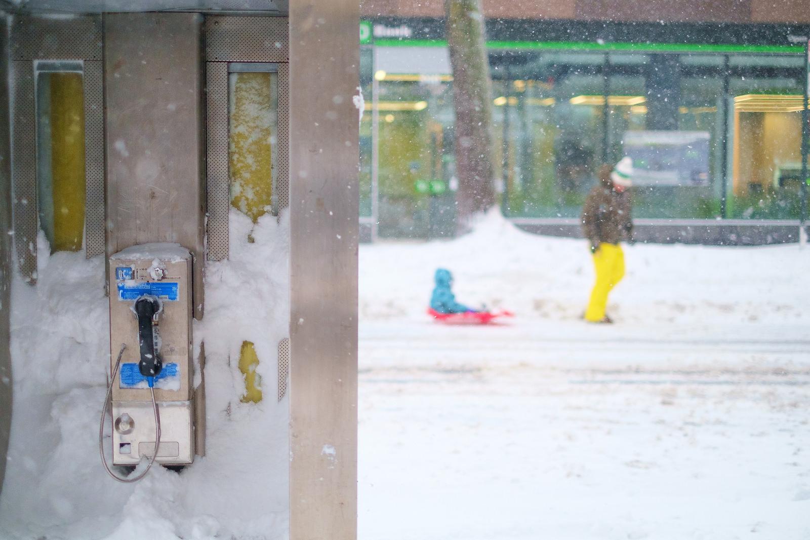 """Calling for snow"" January, 2016. Carroll Gardens, Brooklyn  Fujifilm XPro1, 35mm, f/1.4, 1/2000, ISO 640"