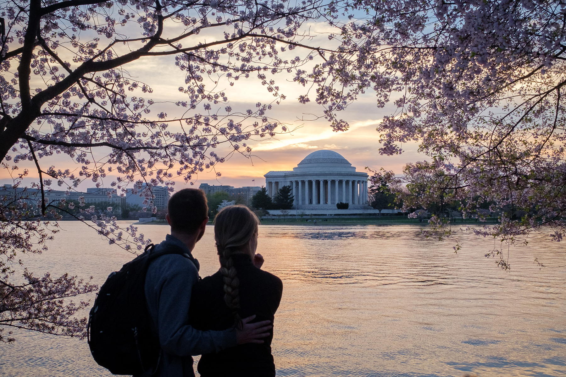 Washington-DC-Cherry-Blossom-Festival.jpg