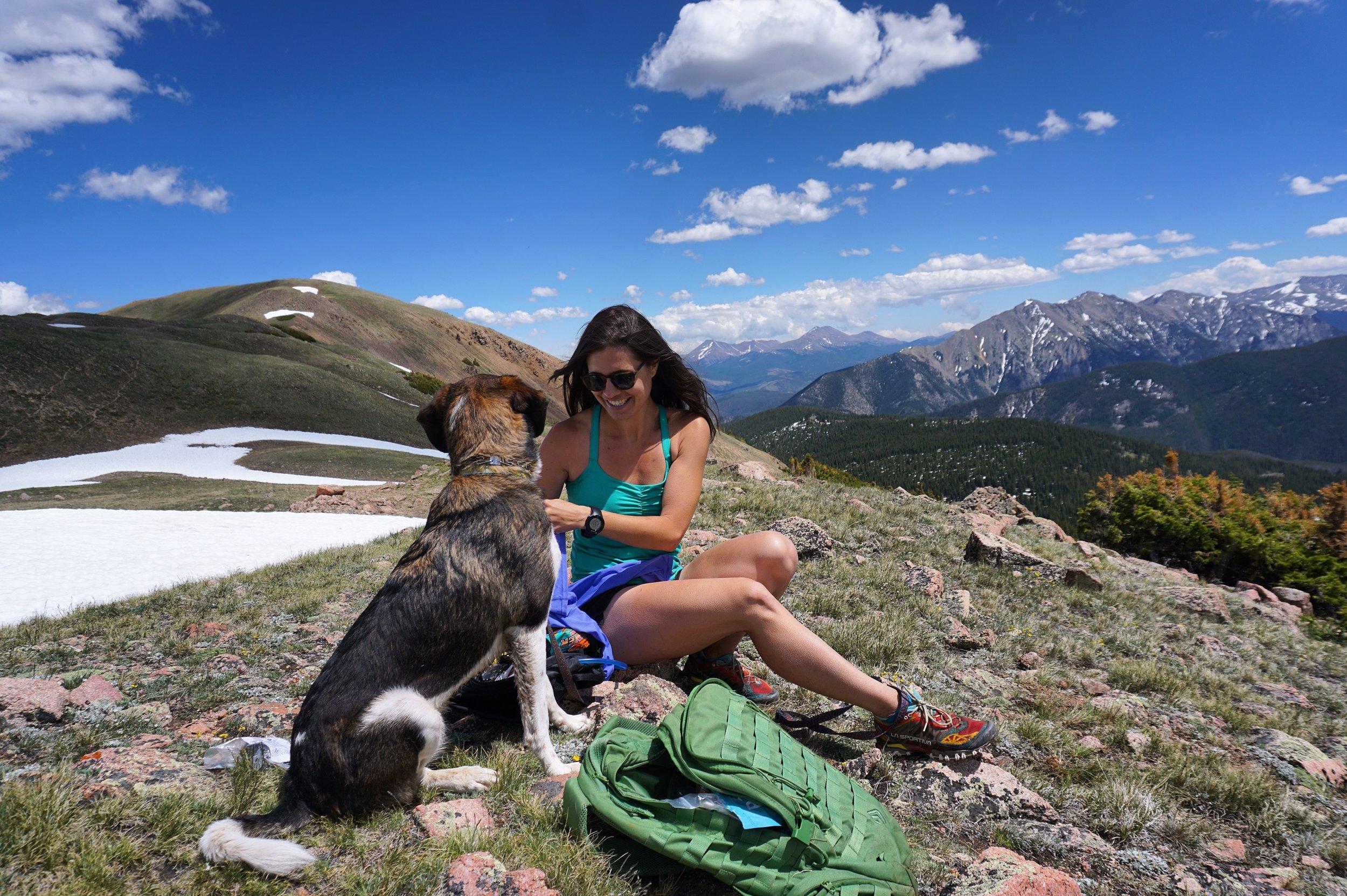 Summit Dog - Emily Olsen.JPG