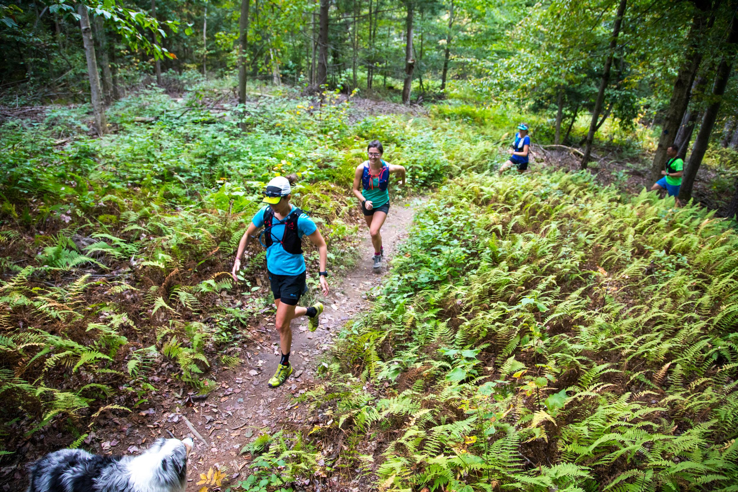 Trail Running - Emily Olsen.JPG