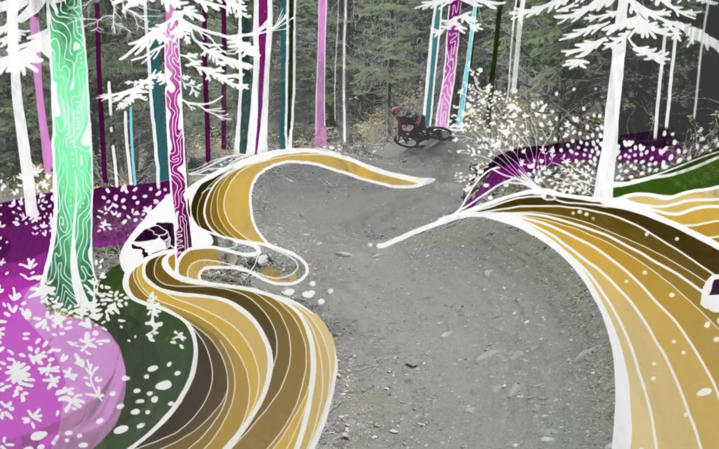 Mountain Bike Meets Painting: Micayla Gatto's Intersection