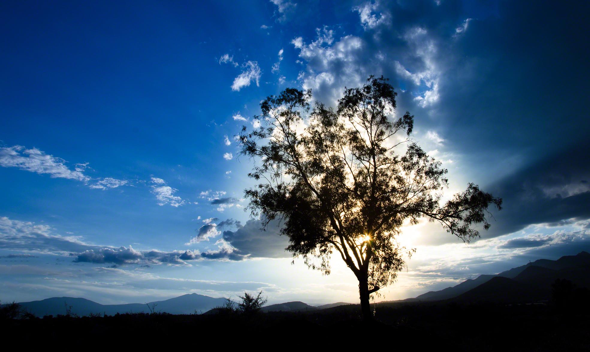 En El Sol.jpg