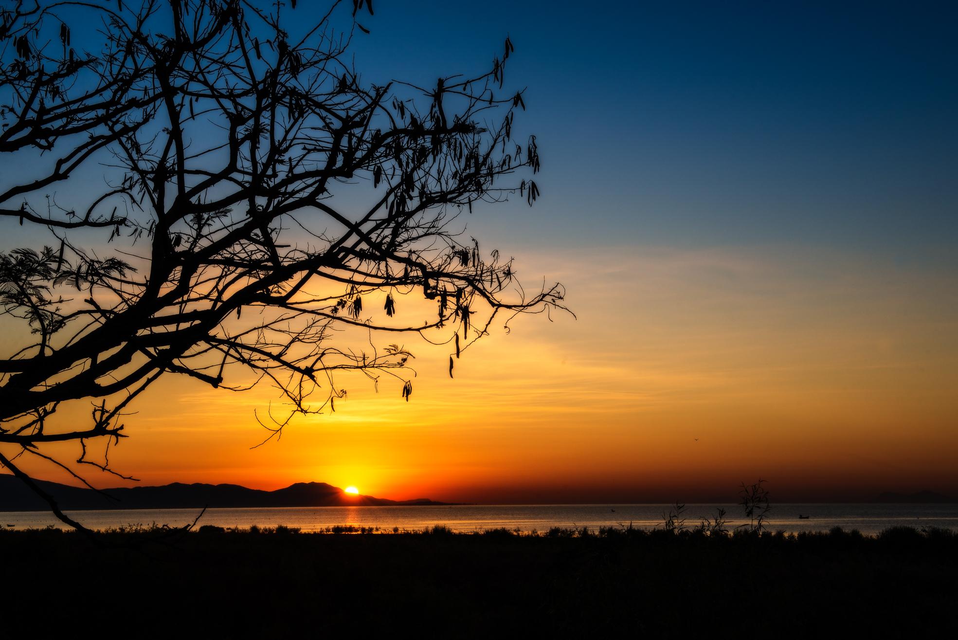 Chapala Sunrise