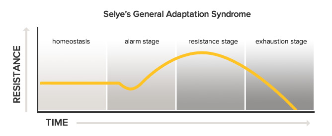 "The G.A.S. theory. Notice how the body develops the most resistance (adaptation) during the beginning of the ""Resistance Stage,"" and how it plummets during the ""Exhaustion Stage."" Rest is a necessary mechanism to allow increased resistance (adaptation) to occur, while avoiding exhaustion."