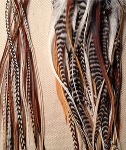 Natural feather colours