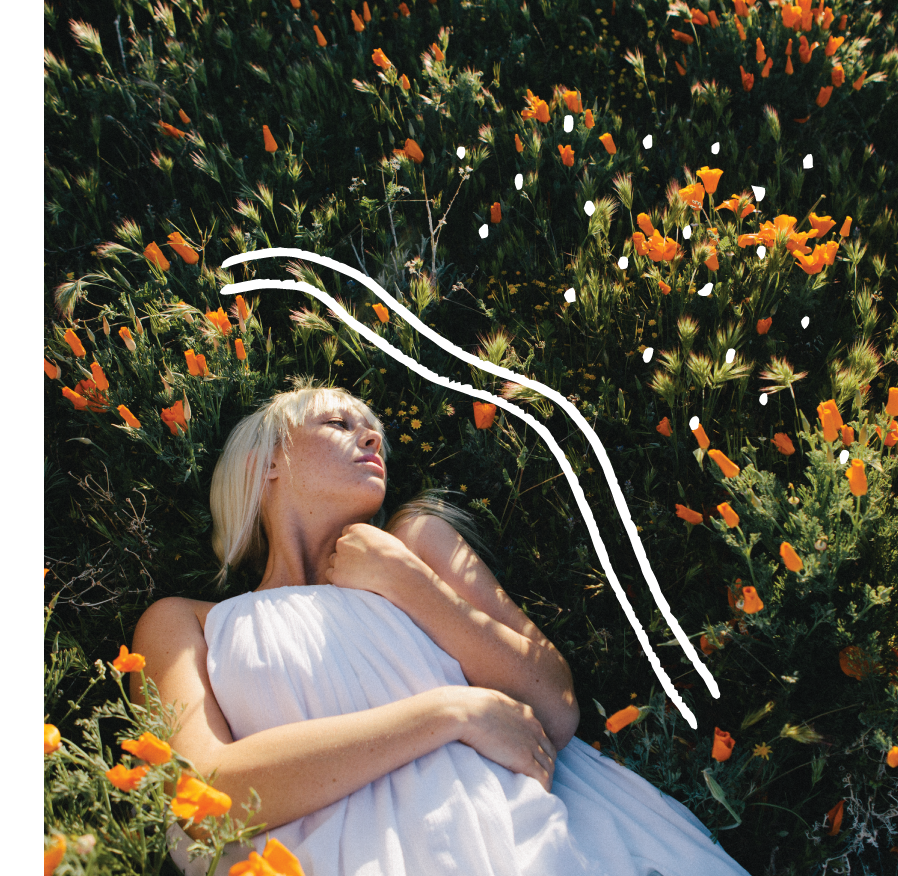 Poppy-Mid-Image03.png