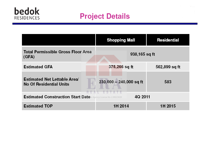 Project details.png