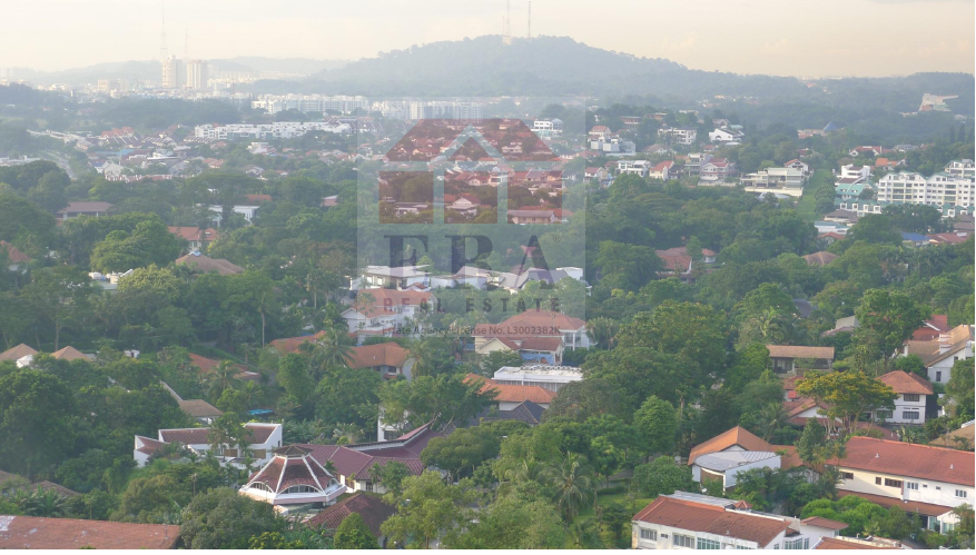 NW view towards Bt Timah Reserve