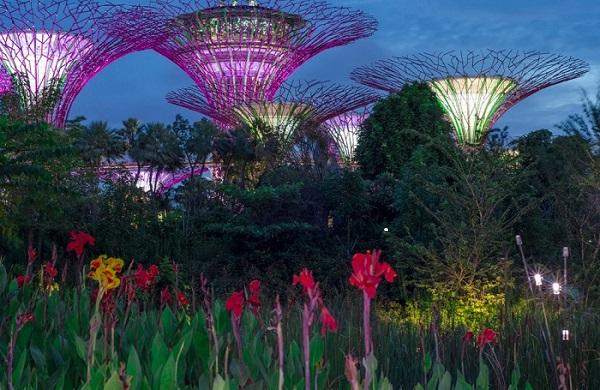 Singapore -  Jaafar Alnasser