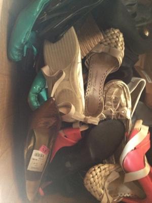 Closet Shoe Organizer