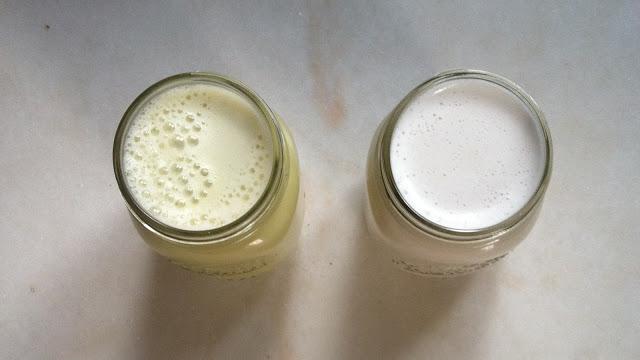 milk+jars.JPG