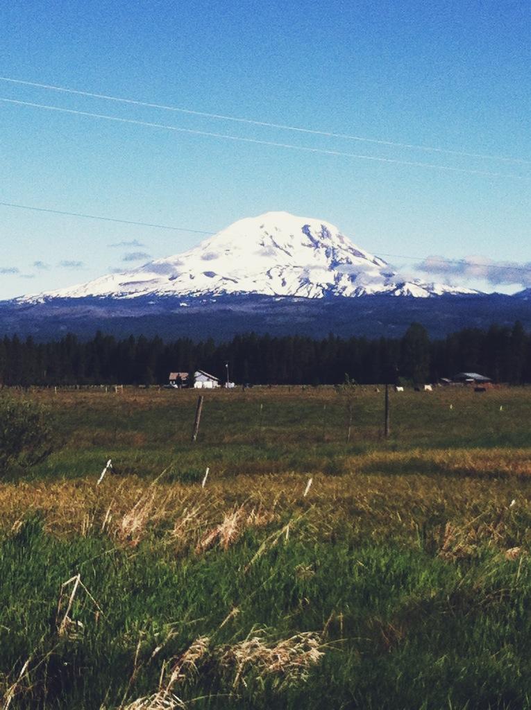 Mount Adams.png
