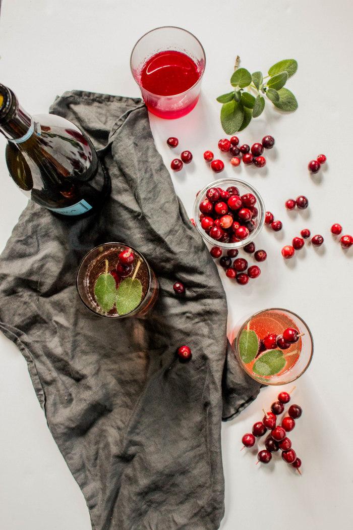 Sparkling Cranberry Sage Cocktail-5.jpg