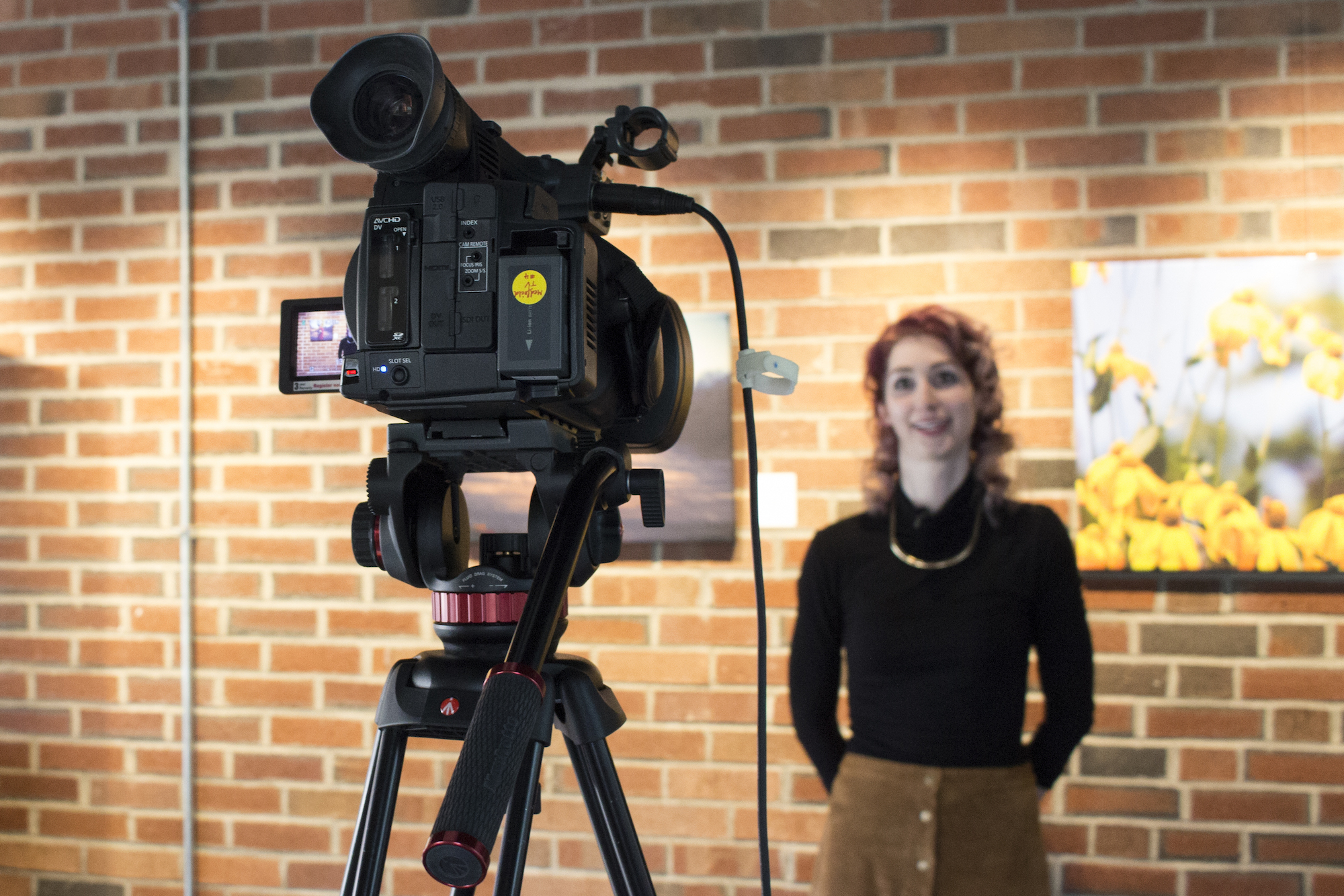 Geena Matuson interviewed for her solo show at Medfield TV, 2016.