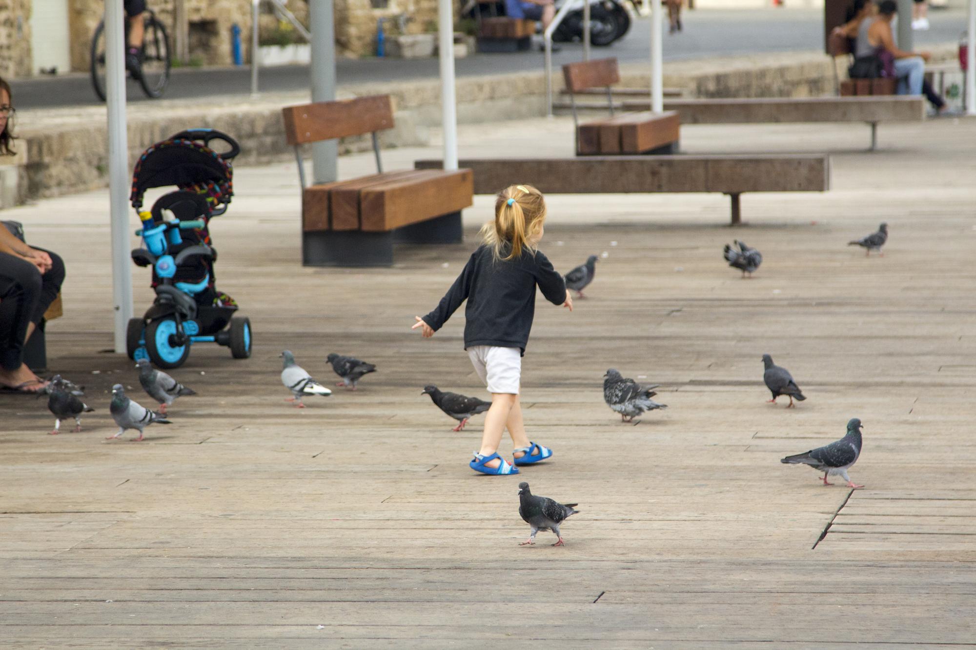 The pier at Old Jaffa in Tel Aviv, Israel. #Travel photography by Geena Matuson @geenamatuson #thegirlmirage.