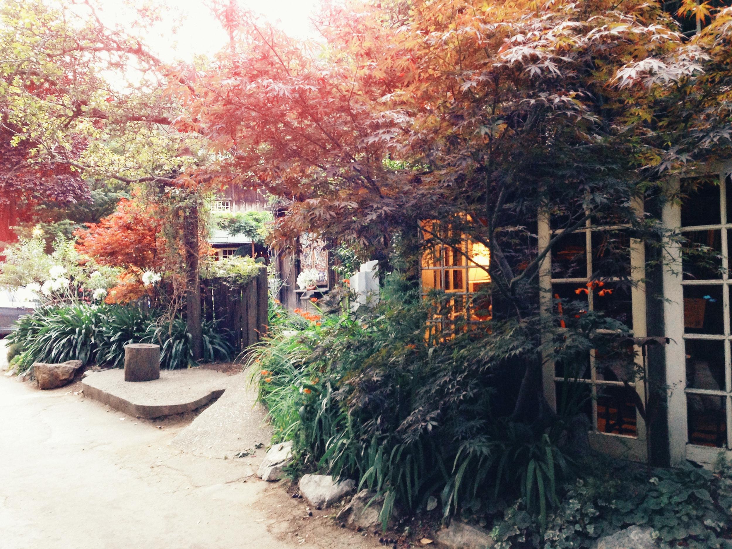 naomi_yamada_big_sur_california_(7_of_11).jpg