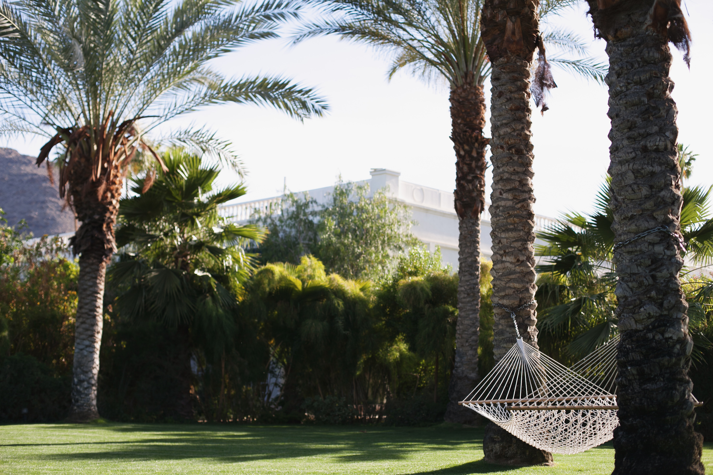The Parker in Palm Springs by Naomi Yamada
