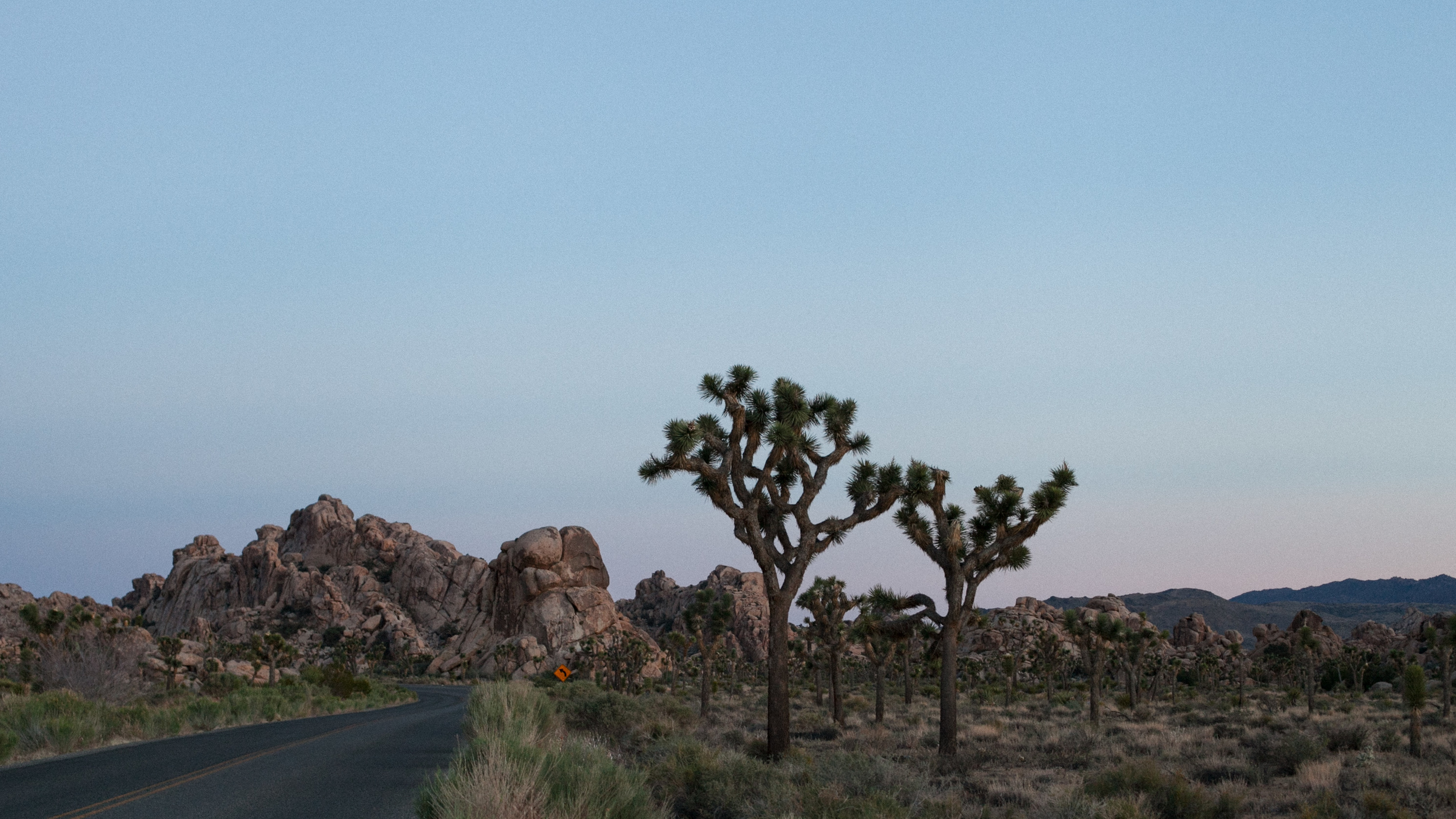 Joshua Tree Road at Dusk