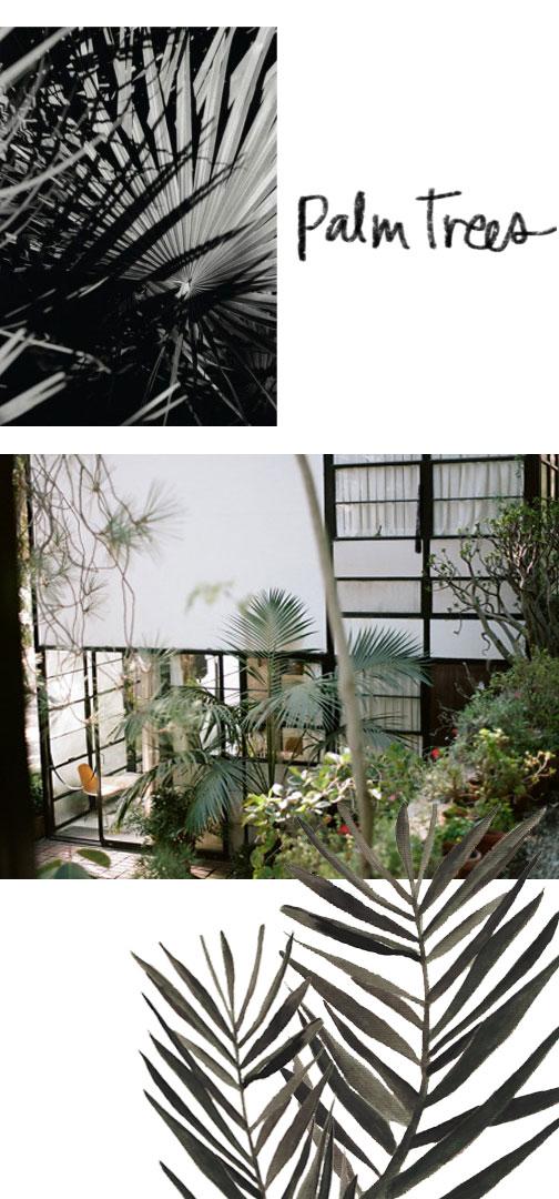 Palm Tree collage by Naomi Yamada