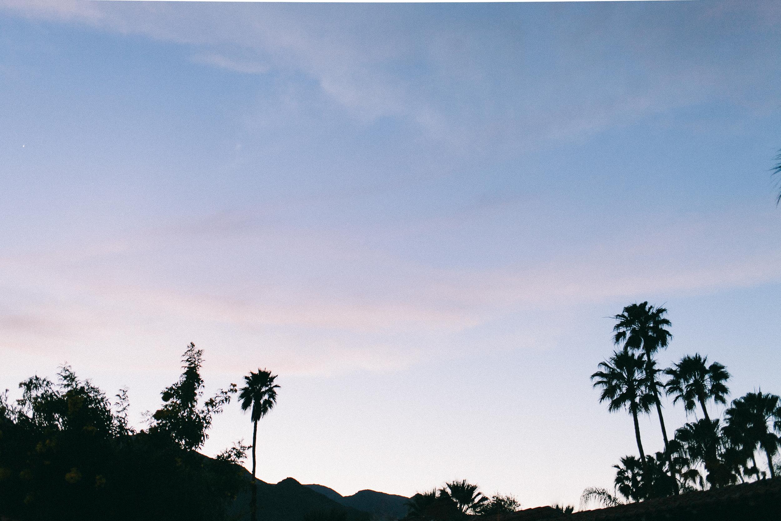 Palm Springs at Dusk by Naomi Yamda