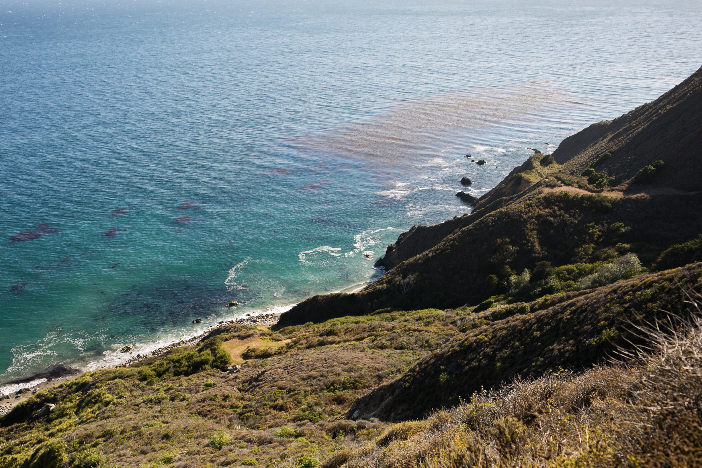 Big_Sur_View_of_Pacific_Ocean_by_Naomi_Yamada-1.jpg