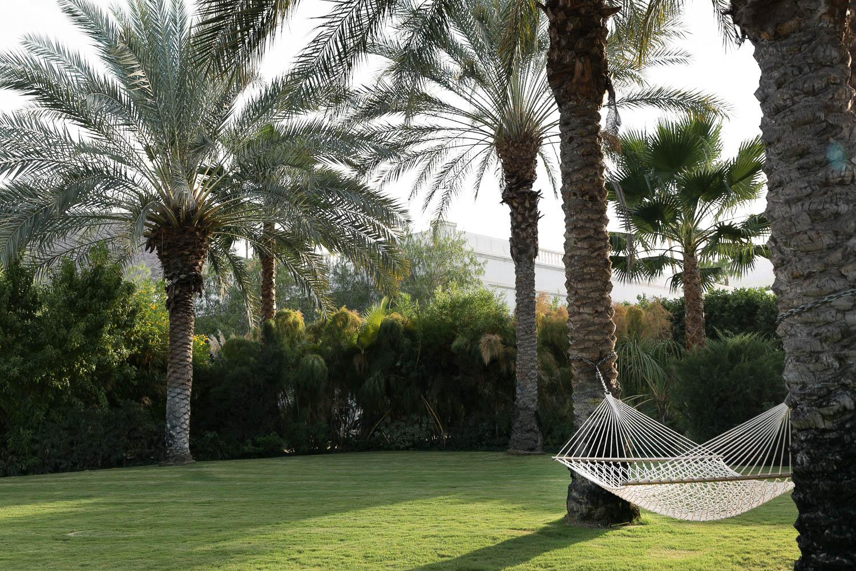 Naomi_Yamada_Palm_Springs_Guide_Hammock.jpg