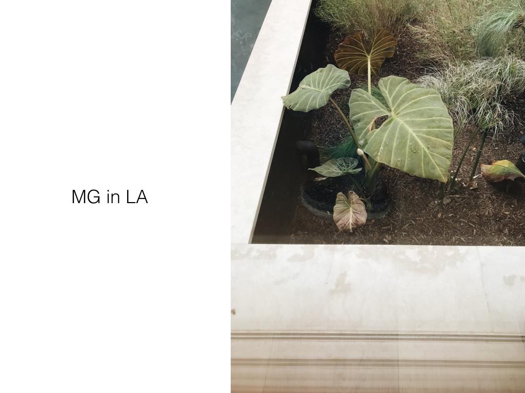 Mansur Graviel West Hollywood by Naomi Yamada