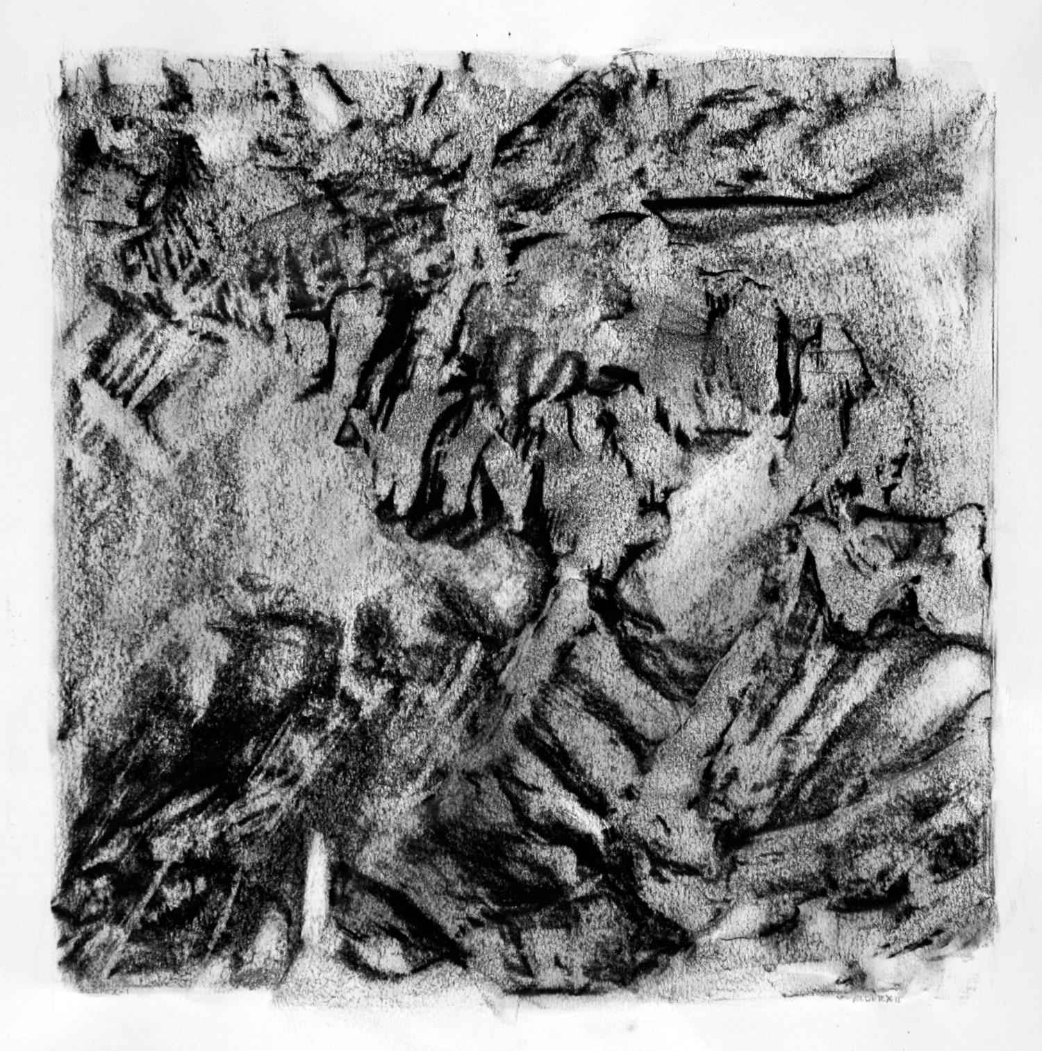 """SCAPE, X-1  12"""" X 12"""" image   19.5"""" x 25.5"""" Canson Dessin Paper"""