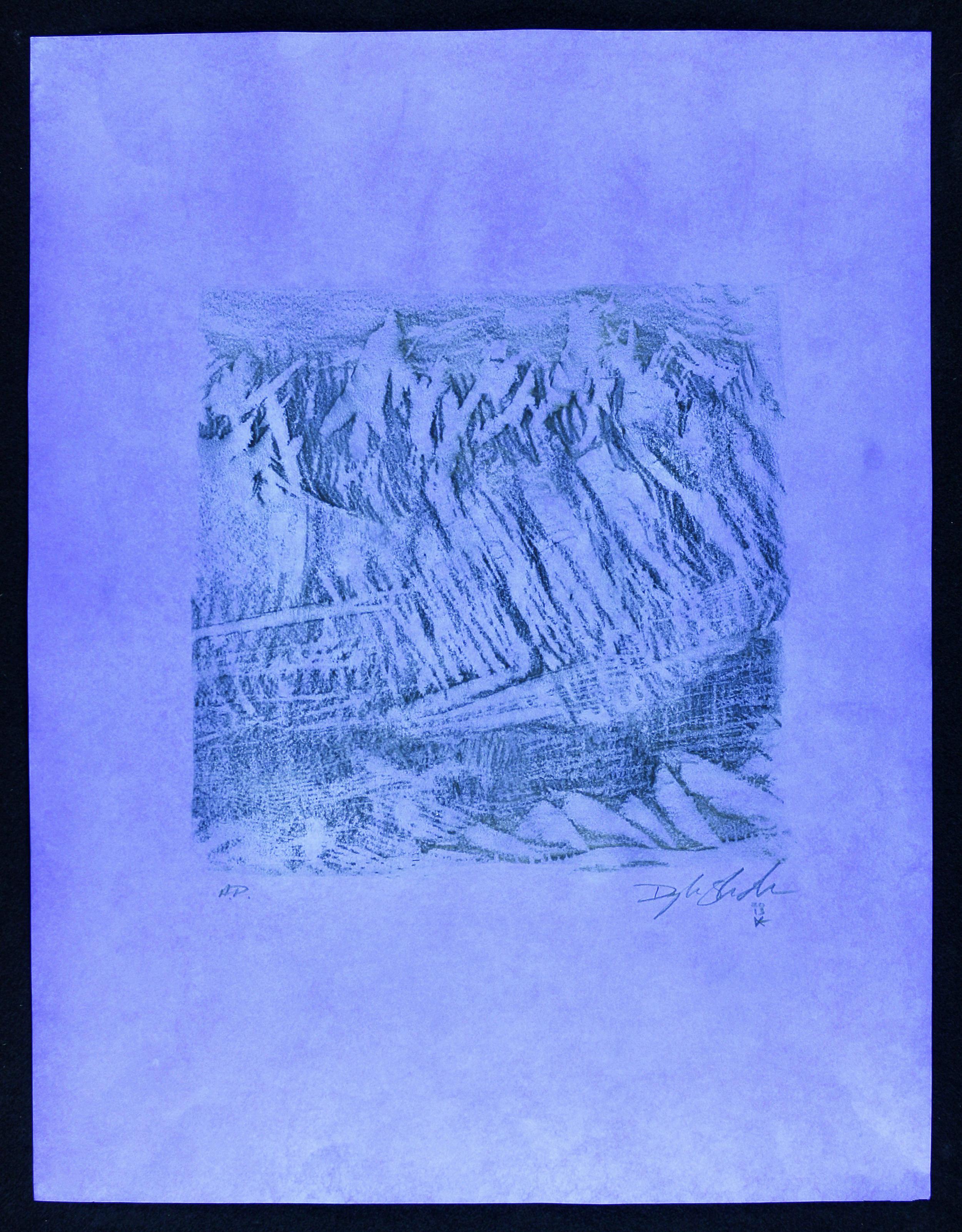 S.Prints,A.P.2.jpg