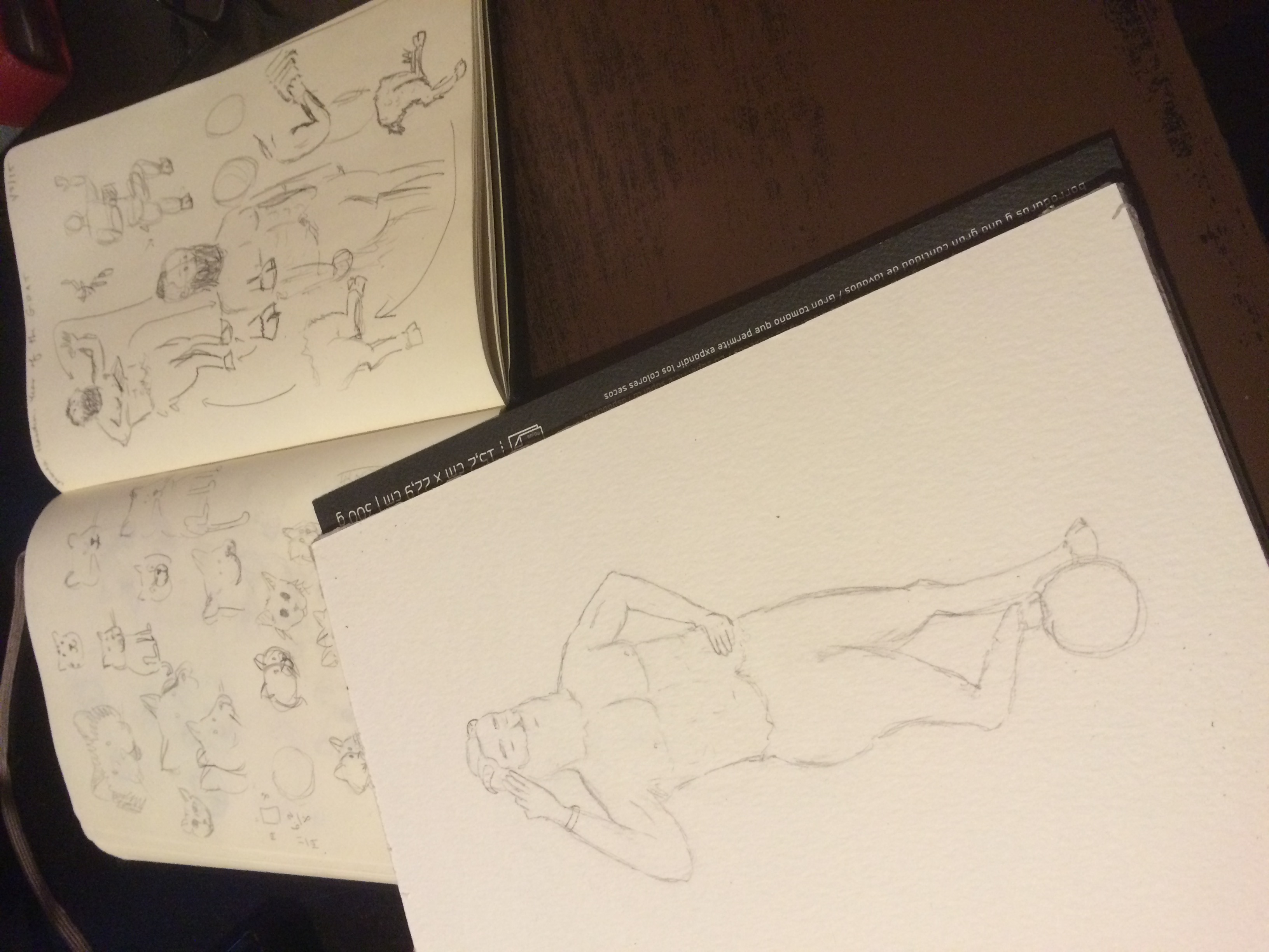 Preliminary sketches from notebook. The Matilda sketches make an appearance.