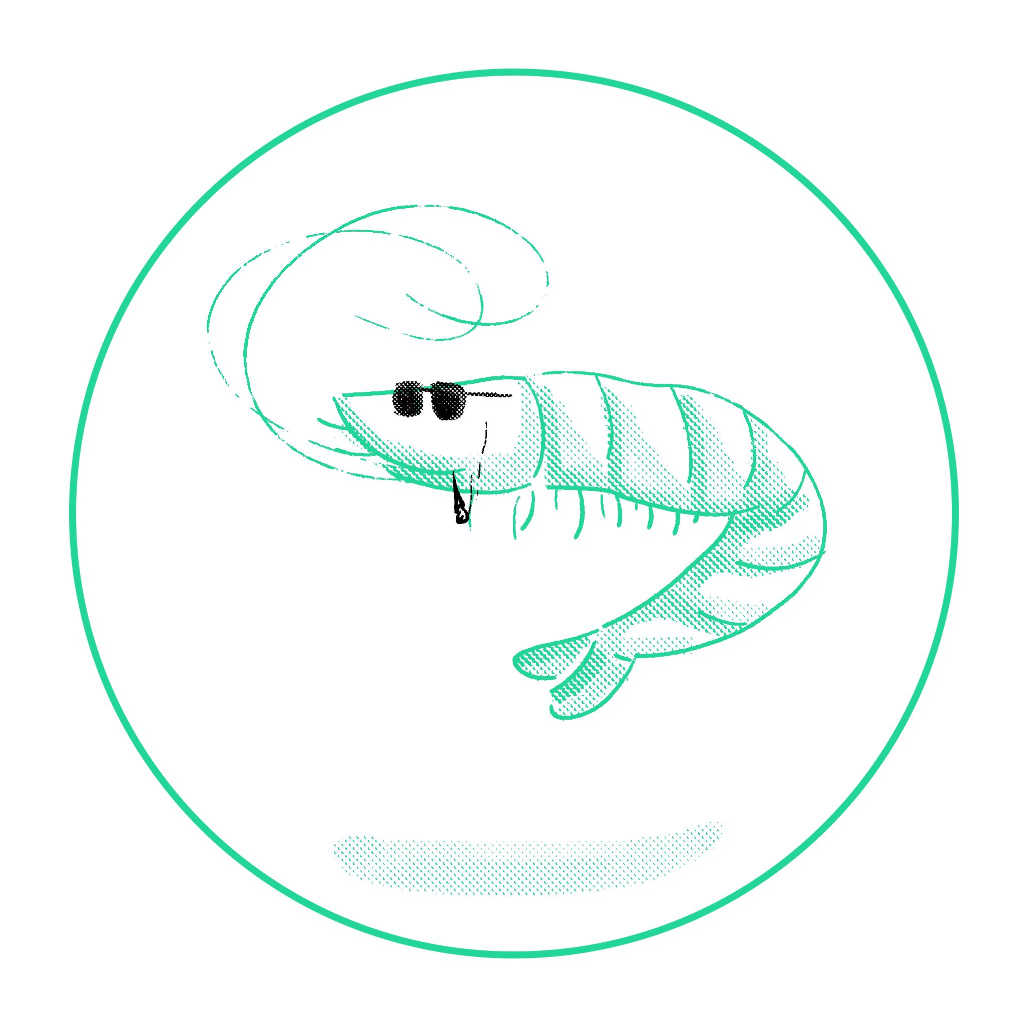 lac-bau-cua_tet-2018_2048x2048_190105_nh_v2.1_shrimp.png