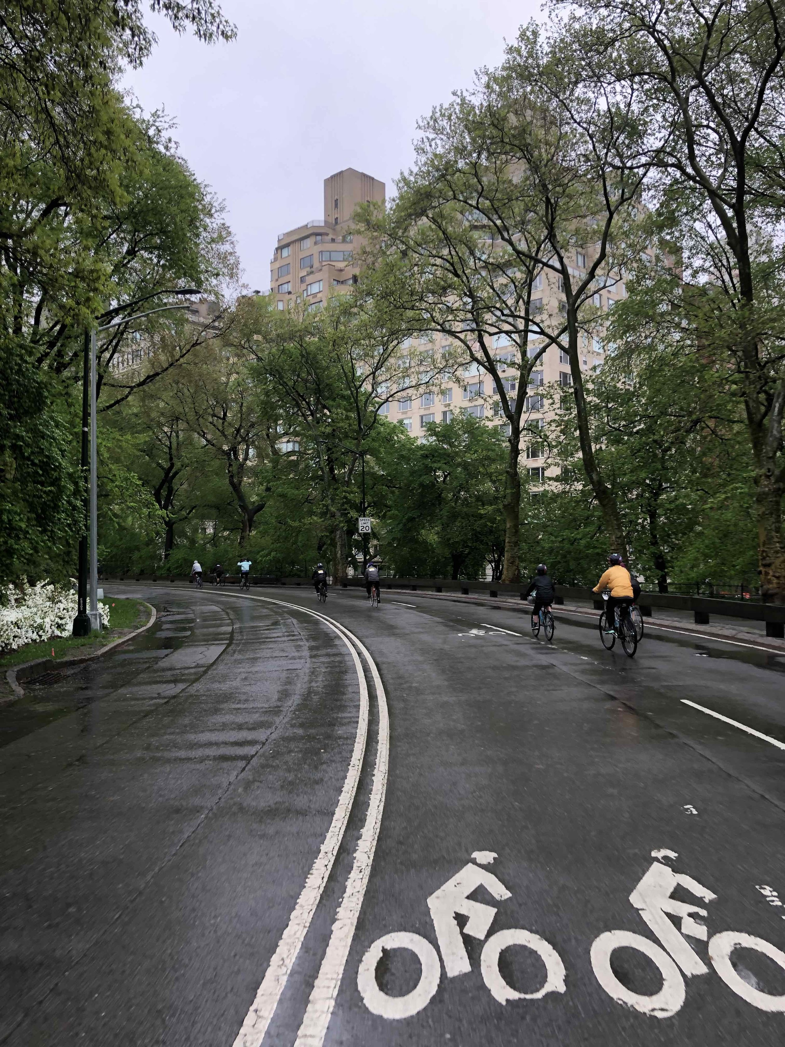 Central Park was nice!