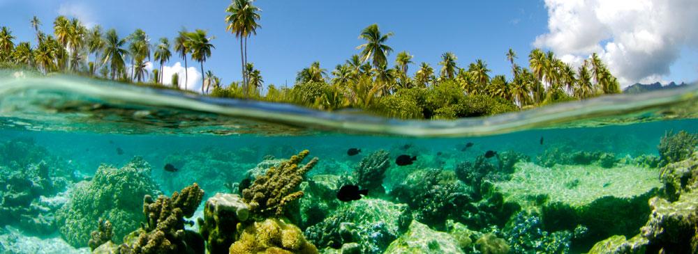 tahaa-snorkeling-7.jpg