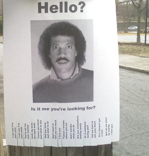 Hello is it me you're looking for.jpeg