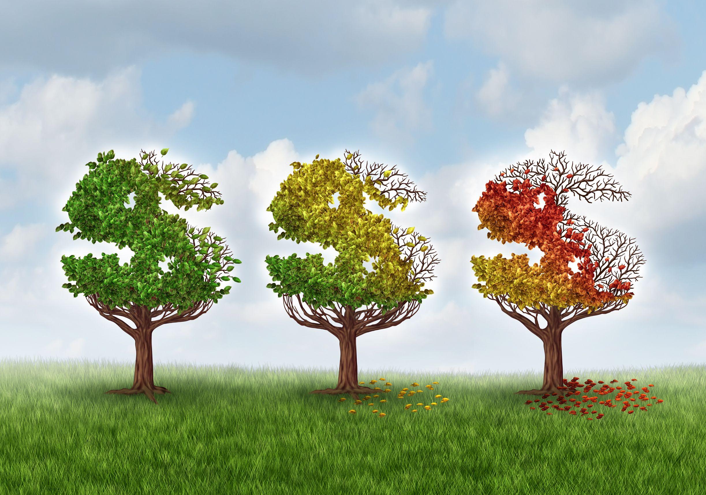 Money Tree - growing money.jpg