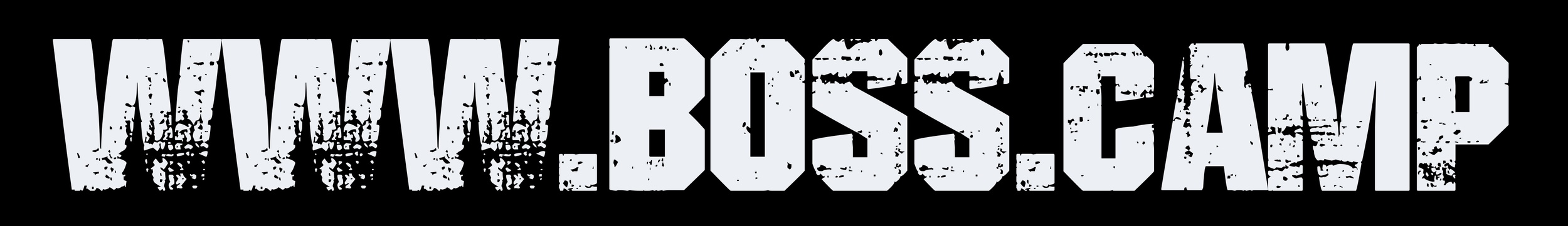 Get better employee performance in just an hour a week with www.boss.camp jpeg