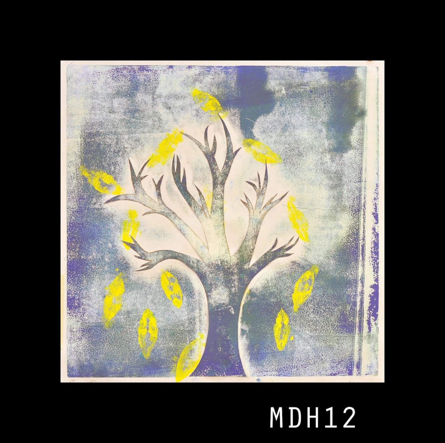 9-MDH12.JPG