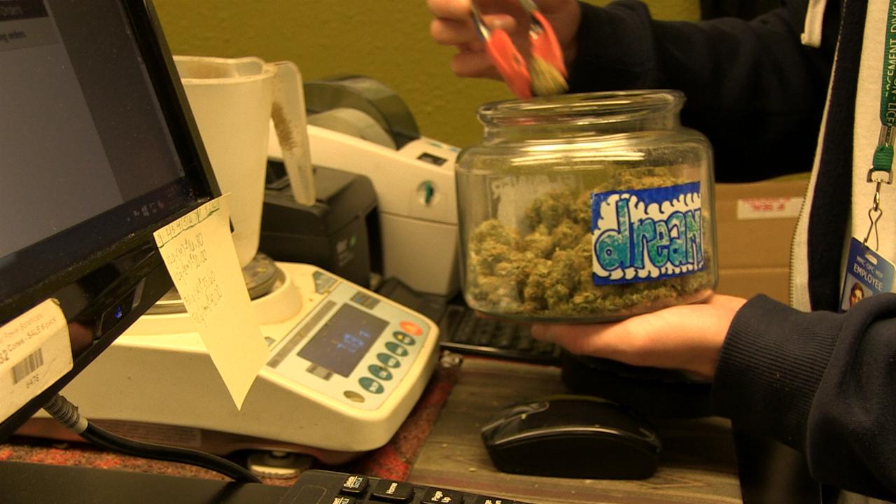 Kiwi Callahan Marijuana 1