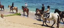 horseback_riding_koha_yoga