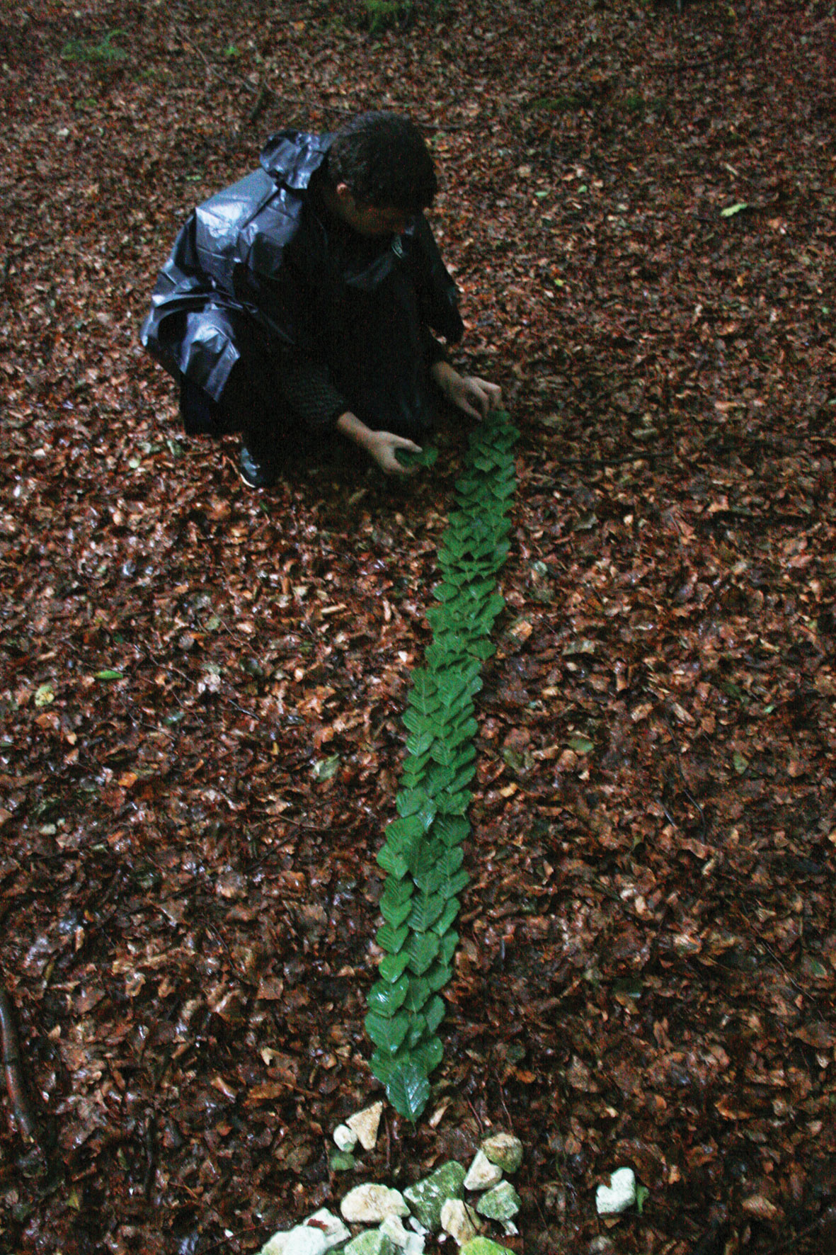Twenty minute task to create a line of green beech leaves on the brown forest floor