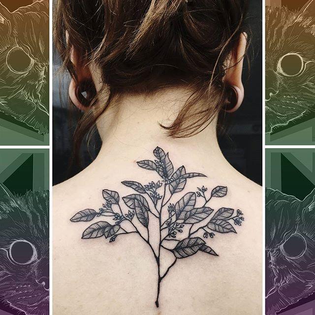 Check out this leafy delight on the top of the back by @sooztattoo  #owlcat #owlcattatto #tattoo #tattoos #tattooworkers #tattooartist #tattoosofinstagram #uktta #aberdeen #aberdeencity #scotland #fun #art #ink #tatmaps #bestofbritishtattoo #sonya7 #seeninthedeen #tattooist #artist #solidink #granitecity #flowertattoo #backtattoo #blackwork
